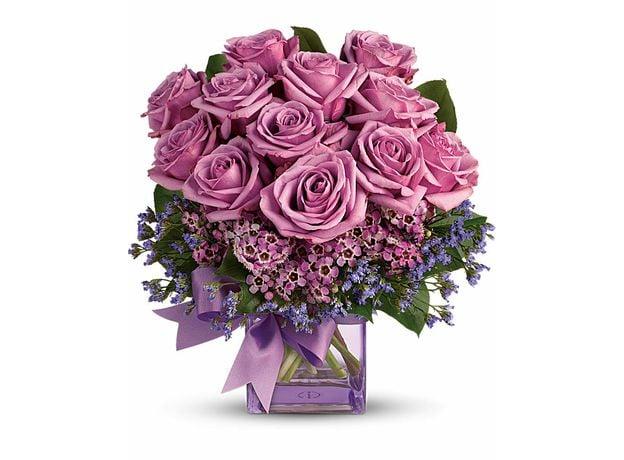 Lavender Rose Melody, image