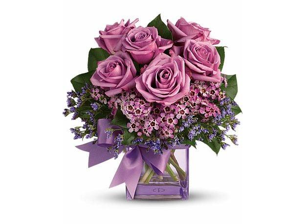 Lavender Rose Melody
